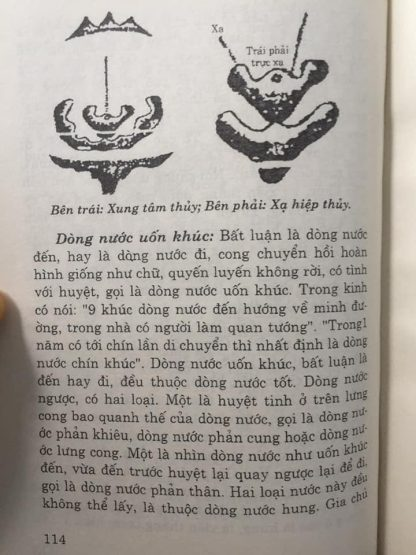 521 Trang
